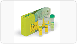 The ddPCR KRAS Screening Multiplex Kit allows detection of seven of the most common KRAS mutations in a single ddPCR experiment.